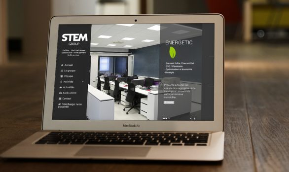 STEM Group site web